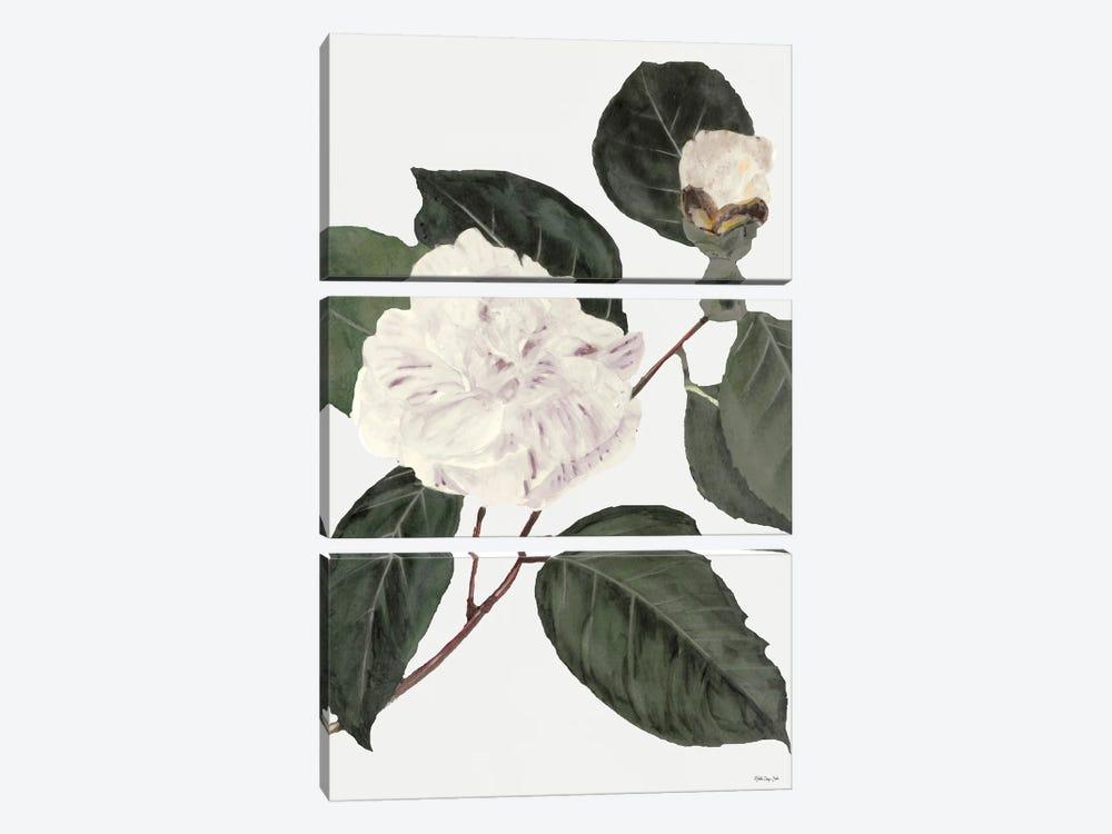 White Botanical I by Stellar Design Studio 3-piece Canvas Wall Art