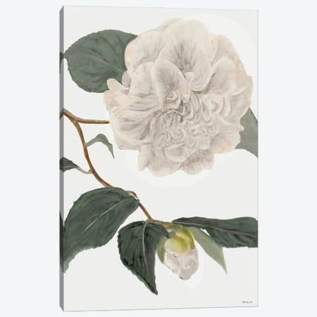White Botanical II 3-Piece Canvas #SLD212} by Stellar Design Studio Canvas Print