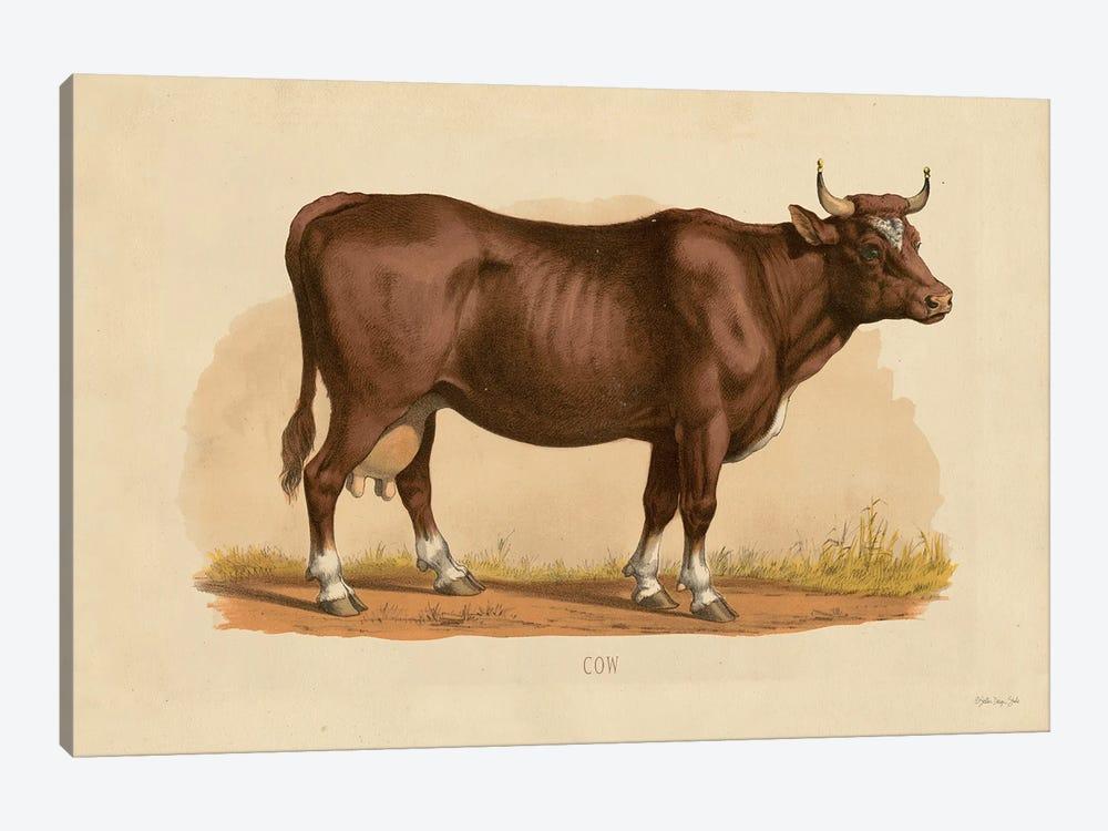 Cow by Stellar Design Studio 1-piece Art Print