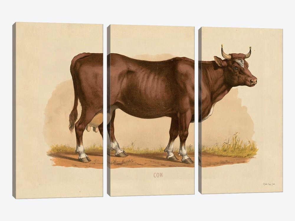 Cow by Stellar Design Studio 3-piece Canvas Print