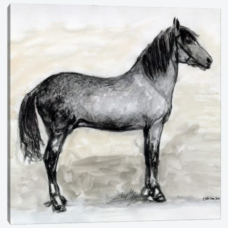 Horse Study I Canvas Print #SLD217} by Stellar Design Studio Canvas Art