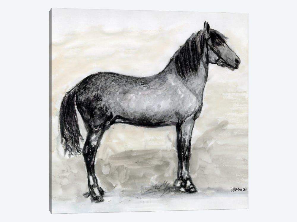 Horse Study I by Stellar Design Studio 1-piece Canvas Art