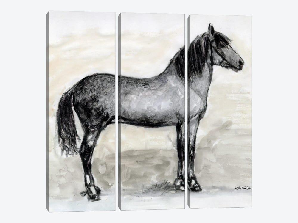 Horse Study I by Stellar Design Studio 3-piece Canvas Wall Art