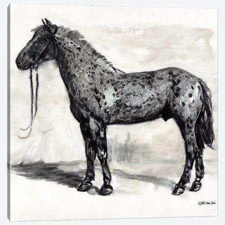 Horse Study II Canvas Print #SLD218} by Stellar Design Studio Canvas Art Print