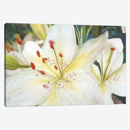 Macro Lilies Canvas Print #SLD219} by Stellar Design Studio Canvas Print