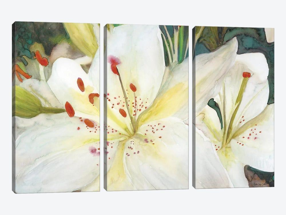 Macro Lilies by Stellar Design Studio 3-piece Canvas Wall Art
