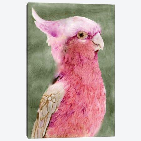 Palm Springs Parrot I Canvas Print #SLD21} by Stellar Design Studio Art Print