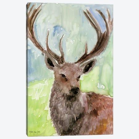 Pacific Coast Wildlife VI Canvas Print #SLD221} by Stellar Design Studio Canvas Wall Art