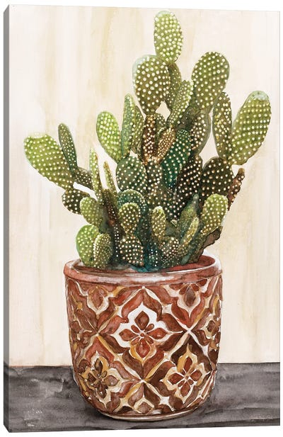 Potted Cactus II Canvas Art Print