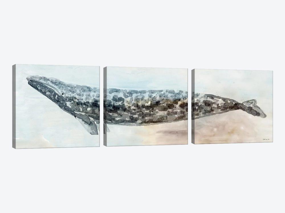 Whale Color I by Stellar Design Studio 3-piece Canvas Art Print
