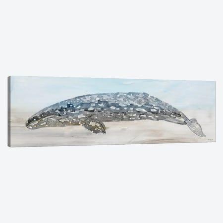 Whale Color II Canvas Print #SLD235} by Stellar Design Studio Canvas Art