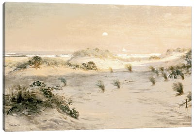 Beach Dunes Canvas Art Print