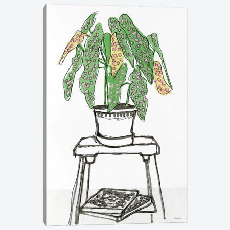 House Plant Study I Canvas Print #SLD257} by Stellar Design Studio Canvas Art