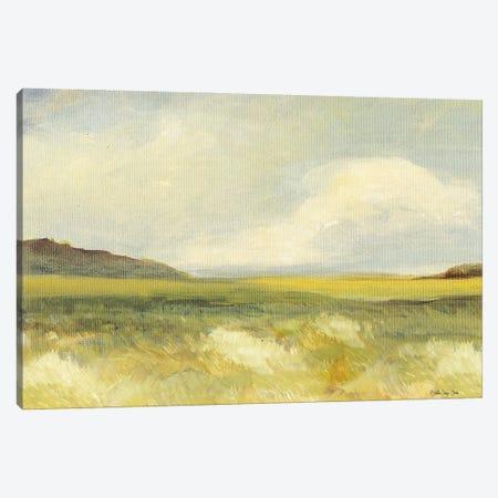 Land II Canvas Print #SLD267} by Stellar Design Studio Canvas Art Print