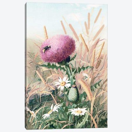 Meadow Flowers I Canvas Print #SLD274} by Stellar Design Studio Canvas Artwork