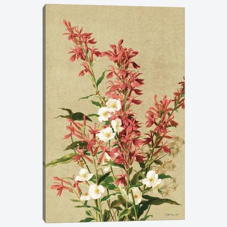 Meadow Flowers II Canvas Print #SLD275} by Stellar Design Studio Canvas Artwork