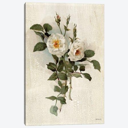 White Roses Canvas Print #SLD283} by Stellar Design Studio Canvas Wall Art