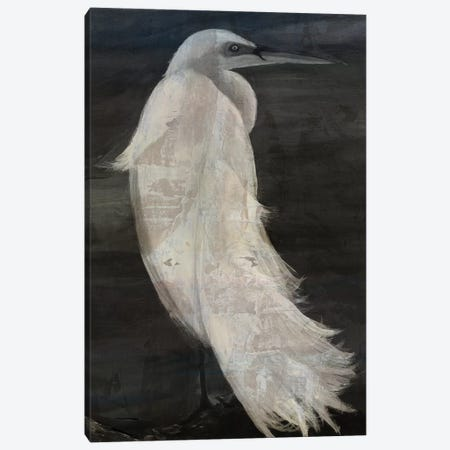 Textured Egret II Canvas Print #SLD28} by Stellar Design Studio Art Print