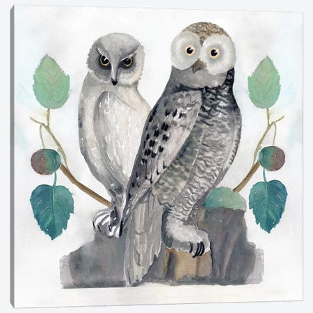 Traditional Owls I Canvas Print #SLD29} by Stellar Design Studio Art Print