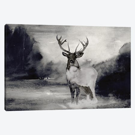 Bull In Forest I Canvas Print #SLD325} by Stellar Design Studio Canvas Art