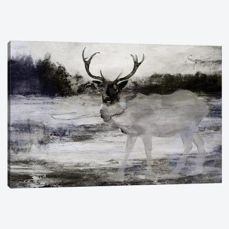 Bull In Forest II Canvas Print #SLD326} by Stellar Design Studio Canvas Wall Art