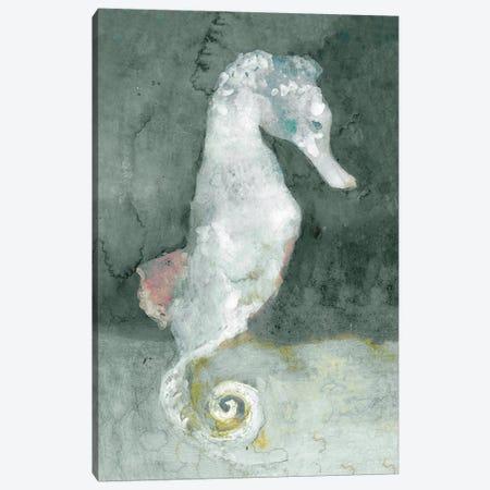 Aquatic II Canvas Print #SLD32} by Stellar Design Studio Canvas Art