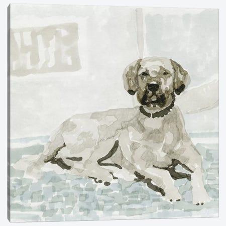 Dog Study I Canvas Print #SLD33} by Stellar Design Studio Canvas Art