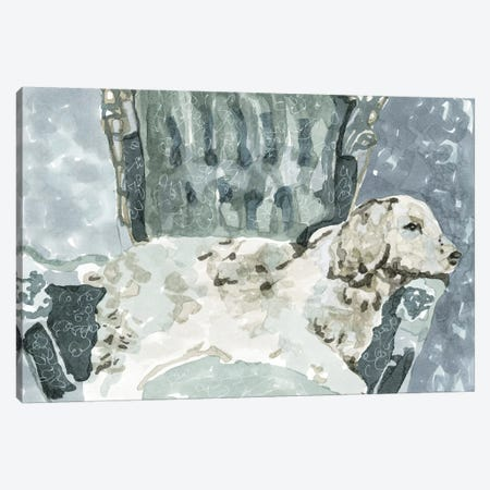Dog Study II Canvas Print #SLD34} by Stellar Design Studio Canvas Print