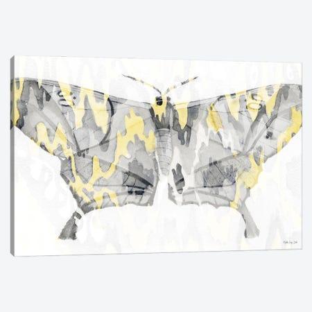 Yellow Gray Patterned Moth II Canvas Print #SLD382} by Stellar Design Studio Canvas Art Print