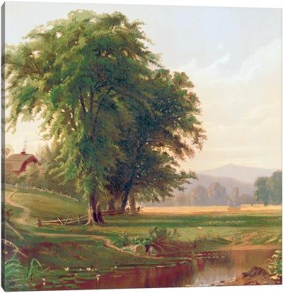 Country Pond I Canvas Art Print