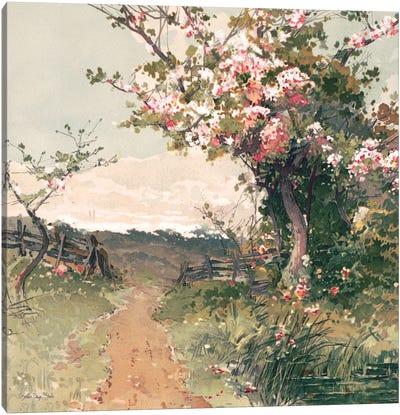 Country Pond V Canvas Art Print