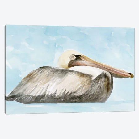 Soft Brown Pelican I Canvas Print #SLD43} by Stellar Design Studio Art Print