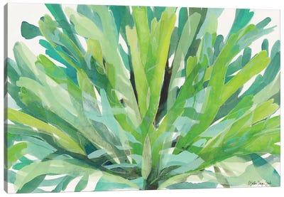 Tropical Sea Grass I Canvas Art Print