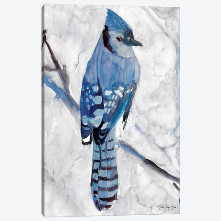 Blue Jay I Canvas Print #SLD72} by Stellar Design Studio Canvas Wall Art