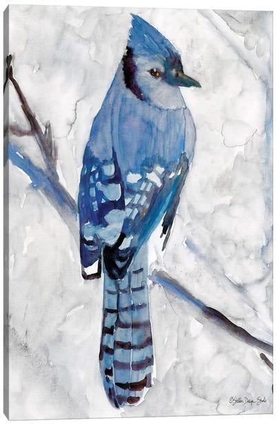 Blue Jay I Canvas Art Print