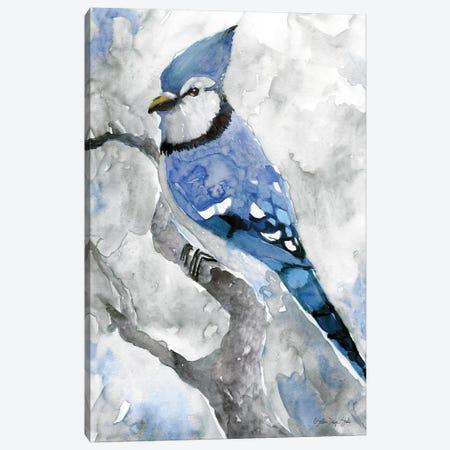 Blue Jay II Canvas Print #SLD73} by Stellar Design Studio Canvas Artwork