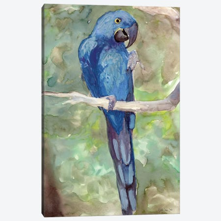Blue Parrot II 3-Piece Canvas #SLD75} by Stellar Design Studio Art Print