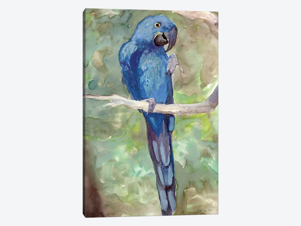 Blue Parrot II by Stellar Design Studio 1-piece Canvas Art