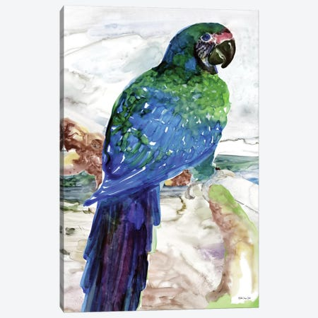 Blue Parrot on Branch I Canvas Print #SLD76} by Stellar Design Studio Canvas Print