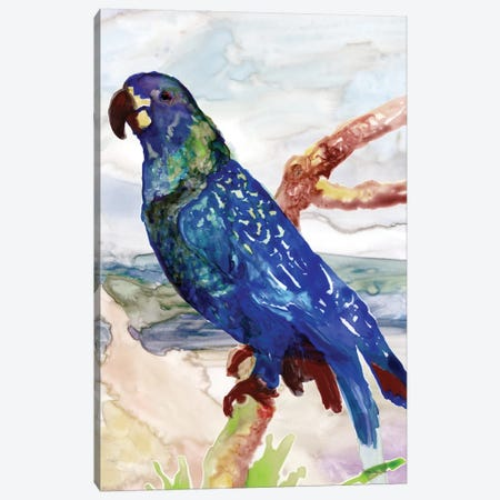 Blue Parrot on Branch II Canvas Print #SLD77} by Stellar Design Studio Canvas Print