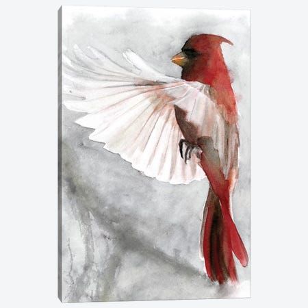 Cardinals II Canvas Print #SLD7} by Stellar Design Studio Canvas Art Print