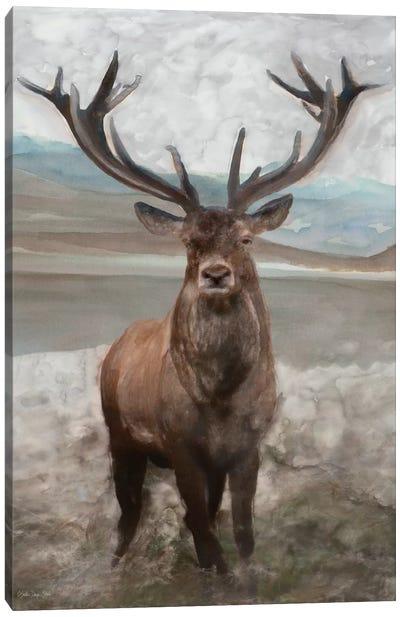 Grand Elk I Canvas Art Print