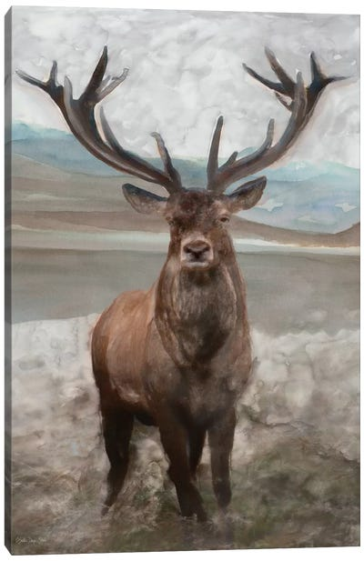 Grand Elk I Canvas Art Print