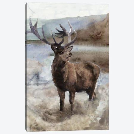 Grand Elk II Canvas Print #SLD92} by Stellar Design Studio Canvas Wall Art