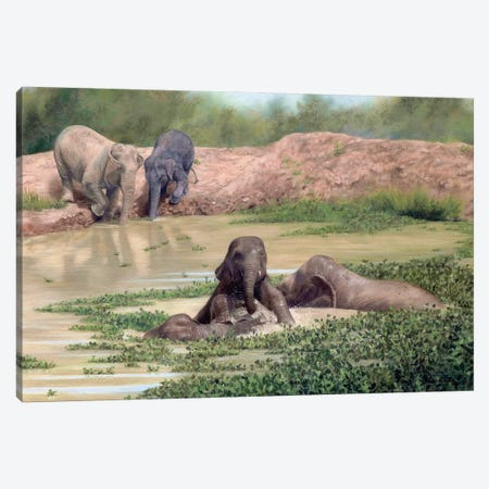 Asian Elephants 3-Piece Canvas #SLG10} by Rachel Stribbling Canvas Print