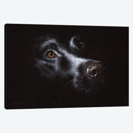Black Labrador Canvas Print #SLG11} by Rachel Stribbling Canvas Art Print