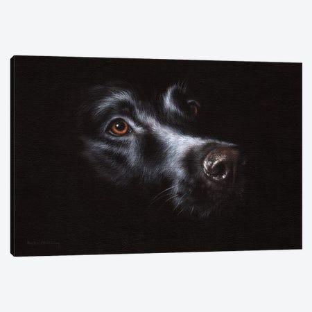Black Labrador Canvas Print #SLG11} by Rachel Stribbling Canvas Art Print
