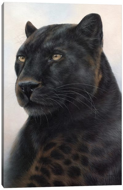 Black Leopard Canvas Art Print