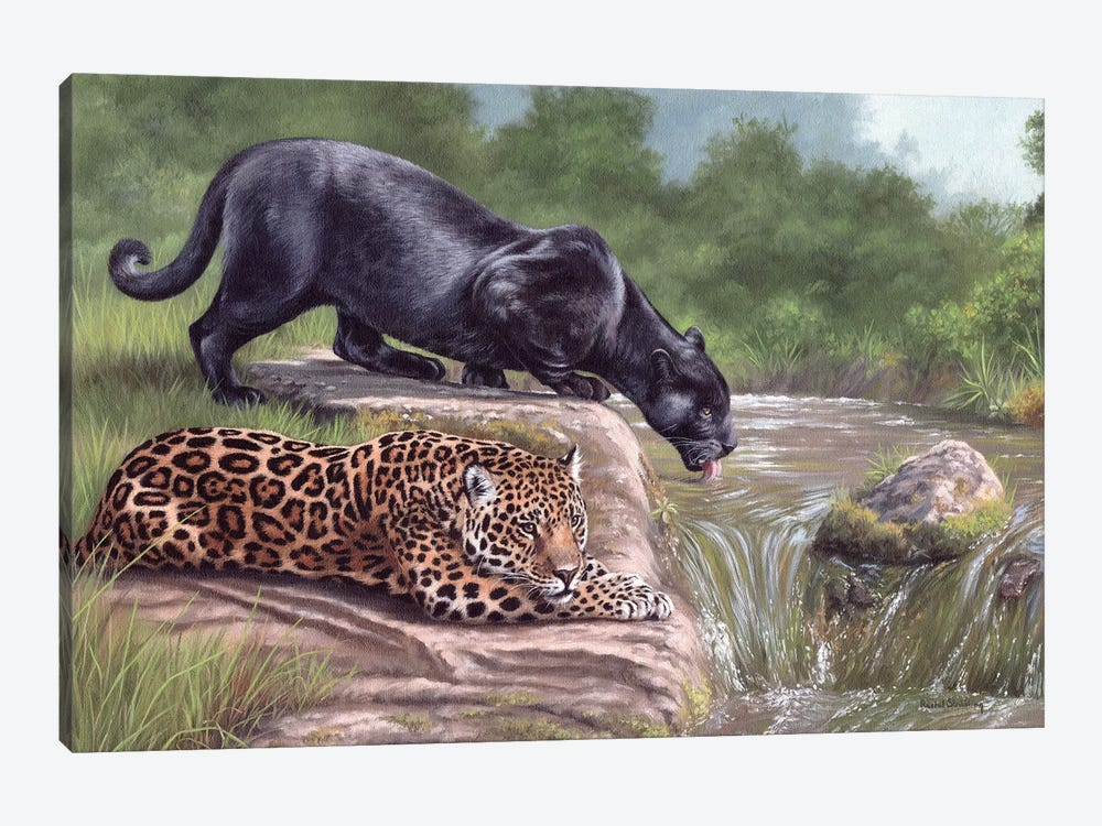 Black Panther And Jaguar by Rachel Stribbling 1-piece Canvas Art