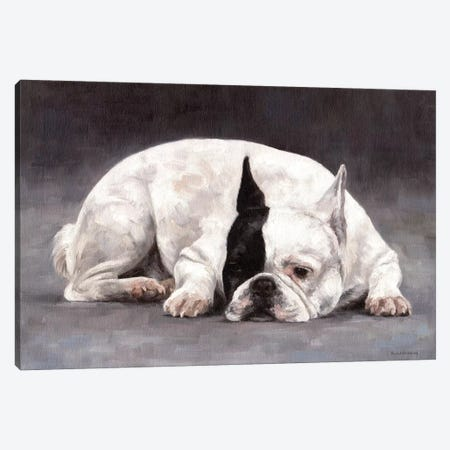French Bulldog Canvas Print #SLG17} by Rachel Stribbling Canvas Wall Art